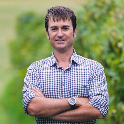 Nick Picone, Group Chief Winemaker, portrait image taken in the greenery of the vineyard