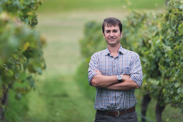 Nick Picone - Group Chief Winemaker, stood in a checked shirt, arms crossed next to a row of vines